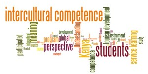 Fu_Intercultural_Competence_TP_WC_600