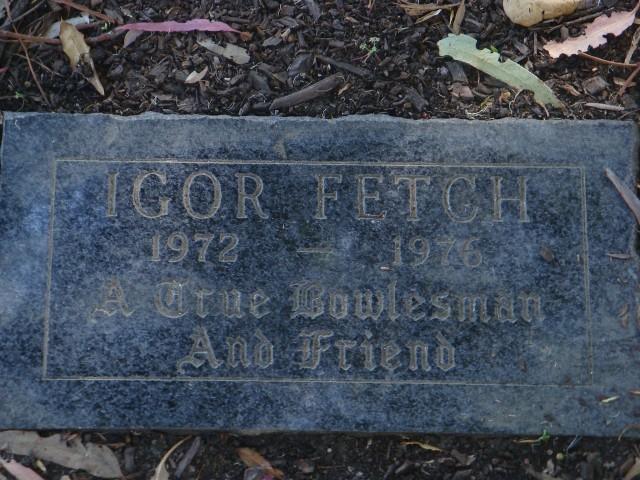 Igor Fetch, one of Cal's finest alumni
